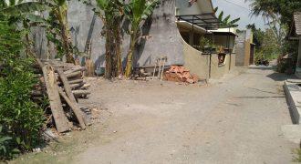 Tanah Murah Asri Dekat Sawah dijual di Sidomoyo Godean Sleman Yogyakarta | TANAH DIJUAL JOGJA