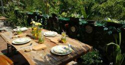 Rumah Luas Dengan Fasilitas Homestay Cantik Favorit Wisatawan Bule & Lokal Lengkap Dengan Kolam Renang | RUMAH DIJUAL DI JOGJA