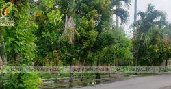 Tanah Dijual Di Gedong Kuning Jogja